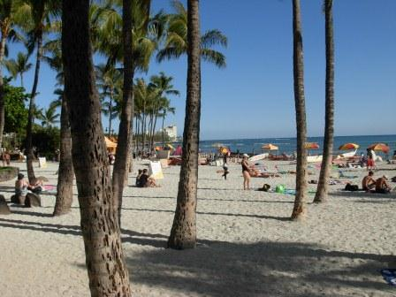 Waikiki Beach... smell the coconut oil on the sunbathing tourists.